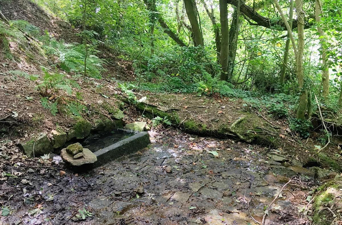Abreuvoir in the cliff path close to Petit Boy Bay